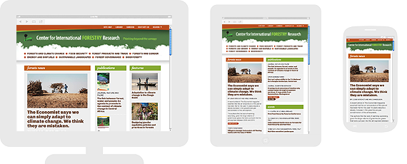 CIFOR responsive layouts